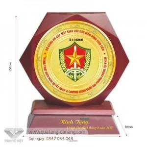 Kỷ niệm chương gỗ đồng _ TTV  0015