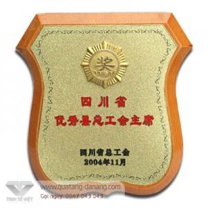 Kỷ niệm chương gỗ đồng _ TTV 001