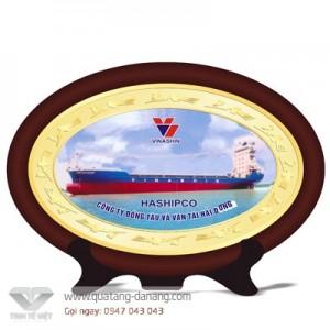 Kỷ niệm chương gỗ đồng _ TTV  008
